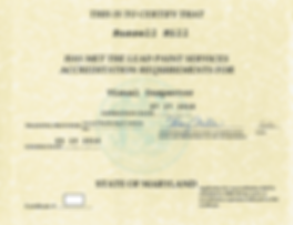 MDE lead visual inspector license