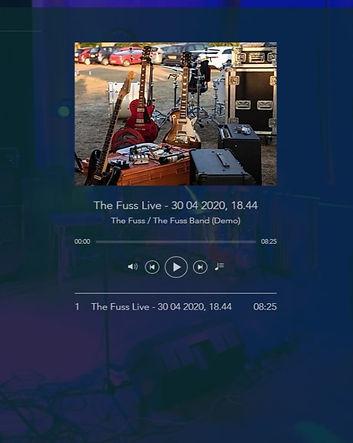 The Fuss Band image (1).jpg