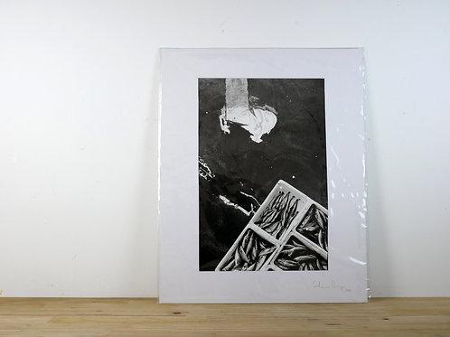 Poisson Dépôt par Federico Drigo