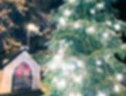 Weihnachtsbaum_An_de_Löng_2019.jpg