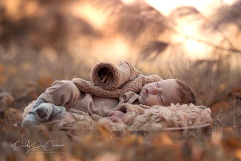 Fotografie baby