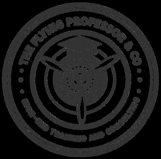 TheFlyingProfessor3_edited.png