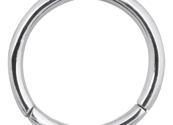 Silver Hinged Segment Ring - Surgical Steel