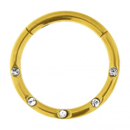 Gold Jewelled Hinged Segment Ring - Surgical Steel