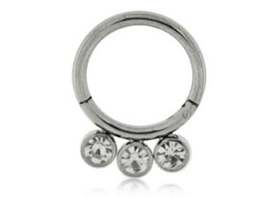 Silver 3 Jewelled Hinged Segment Ring - Titanium