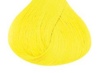 Bright Daffodil - Directions