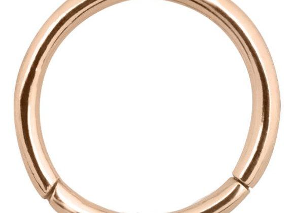 Rose Gold Hinged Segment Ring - Titanium