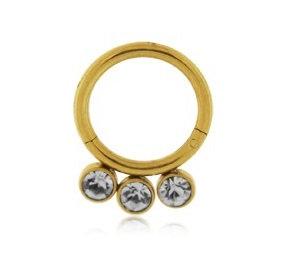 Gold 3 Jewelled Hinged Segment Ring - Titanium