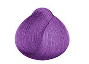 Purple - Stargazer