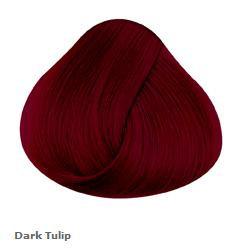 Dark Tulip - Directions