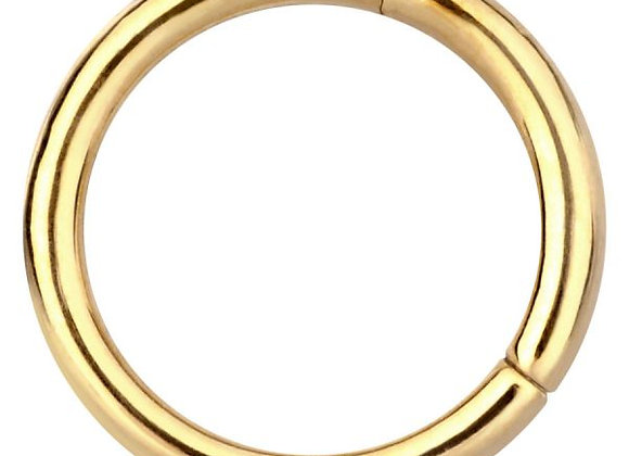 Zircon Gold Hinged Segment Ring - Surgical Steel