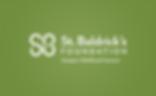 St_Baldrick's_Foundation_Logo.svg.png
