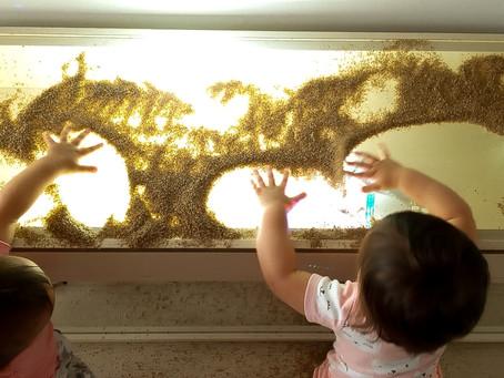 uP Baby  -  Luzes e sombra