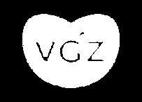 vgz.png