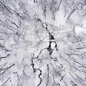 Frozen River 1/3