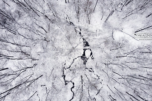 Frozen River One
