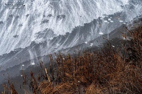 The Frozen Shore