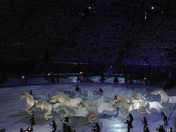 Land Of Enchantment_Horses