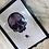 Thumbnail: Vampire Half-Skull