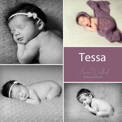 Tessa - 10 jours