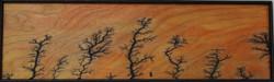 Framed Plywood 2