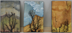 Wooden Plaques 10, 11 and 12