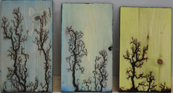 Wooden Plaques 4, 5 and 6