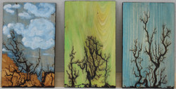 Wooden Plaques 7, 8 and 9