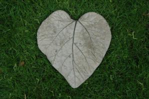 Concrete Poured On Leaf Back