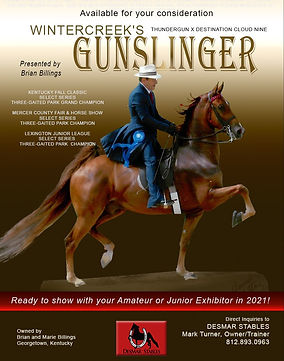 Desmar_Gunslinger_Jan_2021 (1).jpg