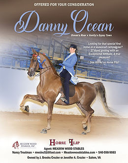 Horse Flip_Danny Ocean