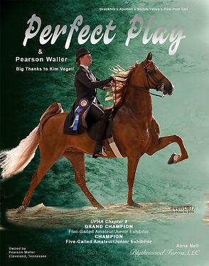 Blythewood_Waller_Perfect Play_June_2021