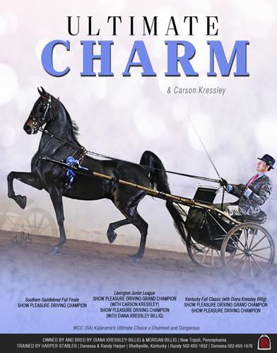 Harper_Kressley_Ultimate_Charm_Oct_2020.