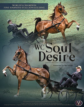 Visser_Sembler_Soul_Desire_MM_Aug_2020.j