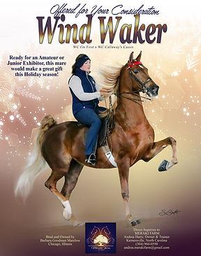 MERAKI-FARM_MANILOW_WIND-WALKER_DECEMBER