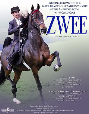 Signature-Stables_COLE_WOLIN_Zwee_NOVEMB