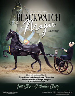 Blythewood_Bidon_Blackwatch_Magic_Sept_2