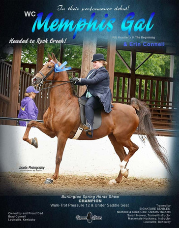 SIGNATURE STABLES_CONNELL_MEMPHIS GAL_JU