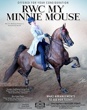Milestone_Wirth_Minnie_Mouse_Sept_2020.j