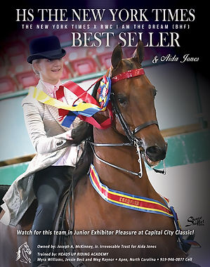 Best Seller_American Saddlebred