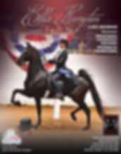 Select Show Horses_Hampton_Bonnie Blue_J