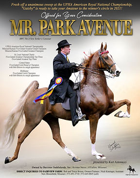 FAIRVIEW-FARM_NAROS_MR-PARK-AVENUE_DECEM