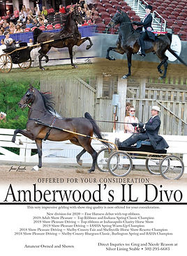 Silver_Lining_Amberwood's Il Divo_MM_Aug