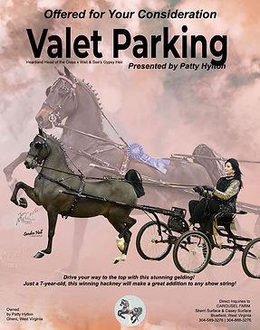 CAROUSEL-FARM_HYLTON_Valet-Parking_June_2021.jpg