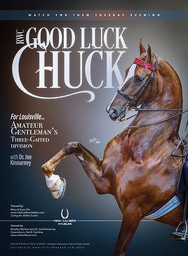 Online_High Caliber_Good Luck Chuck copy