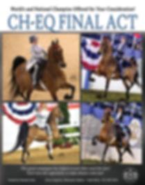 American Saddlebred_Equitation_For Sale