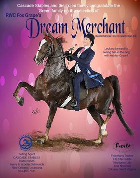 Cascade_Dream_Merchant_Feb_2021.jpg