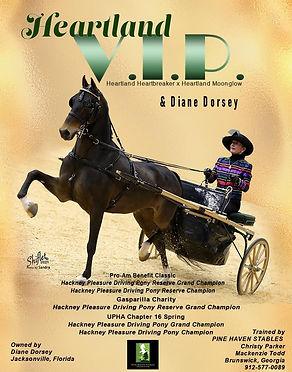PINE HAVEN_DORSEY_HEARTLAND VIP_APRIL_20
