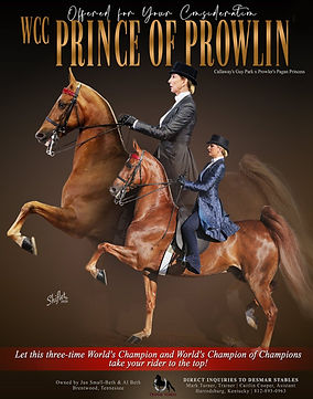 Des_Mar_Prince_Of_Prowlin_Sept_2020 (1).