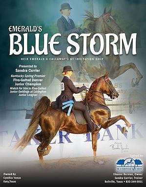 EMERALD'S BLUE STORM